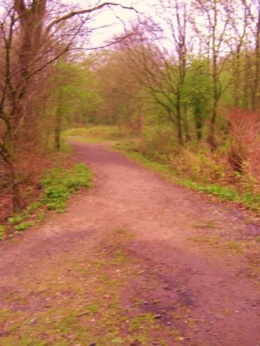 Click to view Kersal Dale Health Walk
