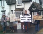 Puppy Farm Protest Dogs 4 Us Salford