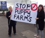 Dogs4Us protest Salford